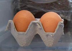 달걀 요리법부터 보관법까지 모두 공개한다!