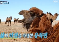 박수홍-김수용-남희석, 전통의상 입고 고비사막行~