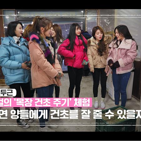 '미라클 원정대' 오마이걸, 한우 먹방 중 훈훈한 의리 과시