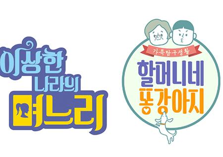 MBC '판결의 온도', '할머니네 똥강아지', '이상한 나라의 며느리' 정규 편성 확정! 교양 라인업 재정비
