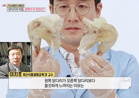 닭 다리는 왼쪽 다리가 더 맛있닭?