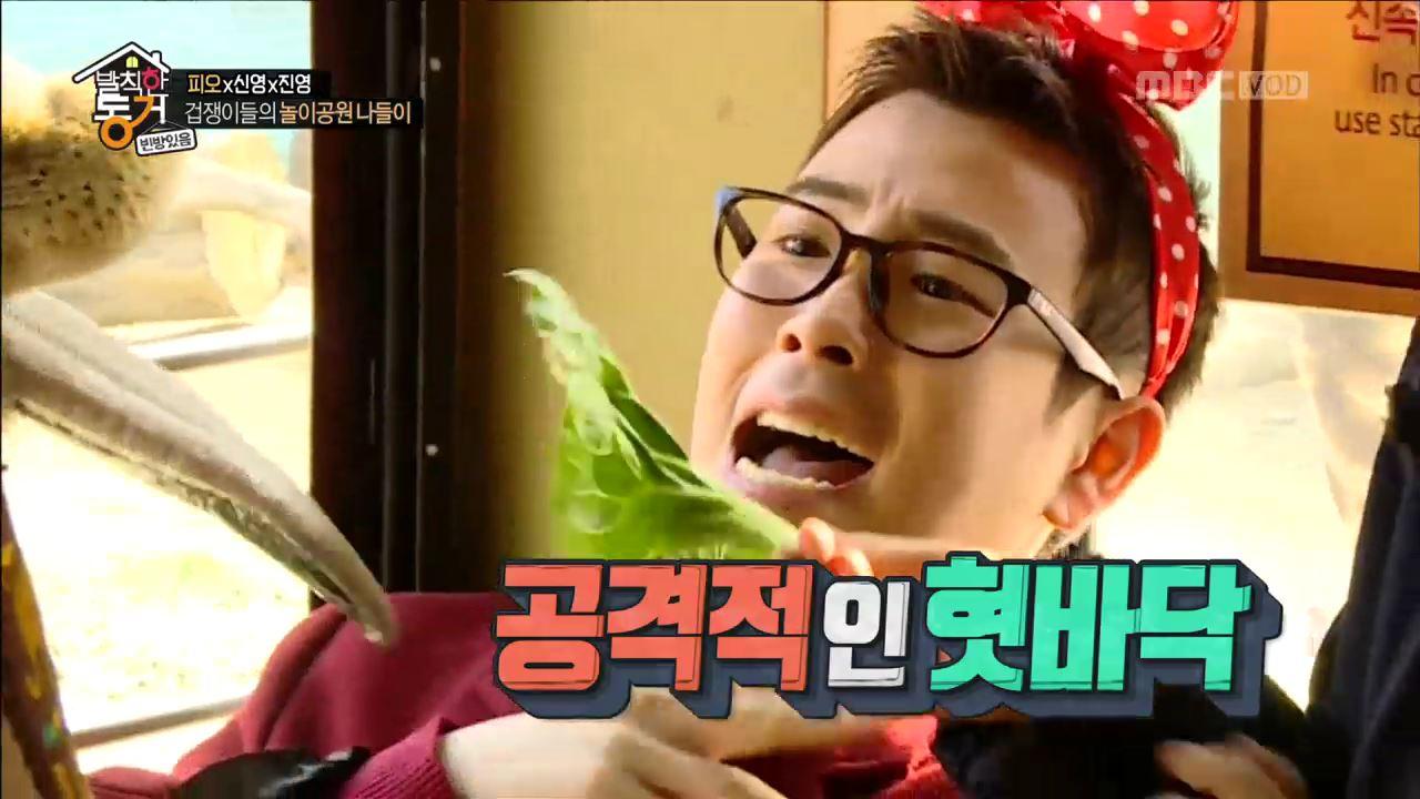 """김신영-홍진영-피오의 리얼 동물원 체험! """"사자 커플에게 봄이 왔어요♥"""""""