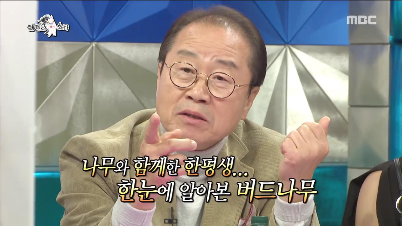 """'라디오스타' '나무전문가' 이상벽, """"가지만 보고 나무 알 수 있다""""...오답 행진 '폭소'"""