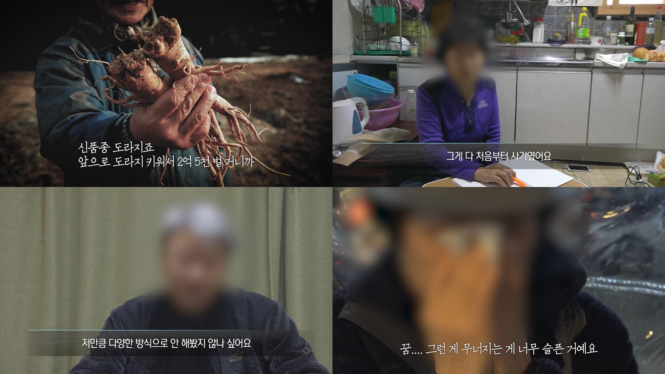 '실화탐사대' 예비 귀농인들의 꿈 짓밟은 '현대판 봉이 김선달' 정체 추적