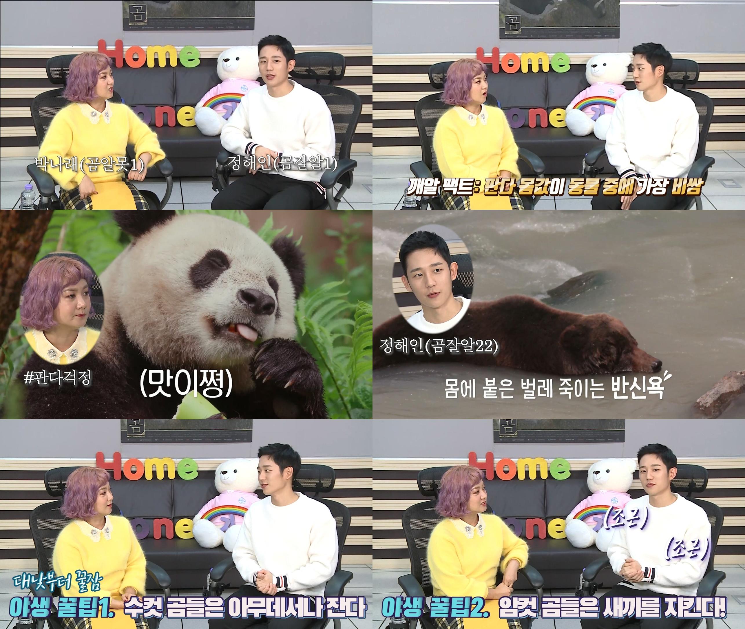 다큐멘터리 '곰', 정해인-박나래의 '곰 혼자 산다' 영상 공개! 본편 기대감UP