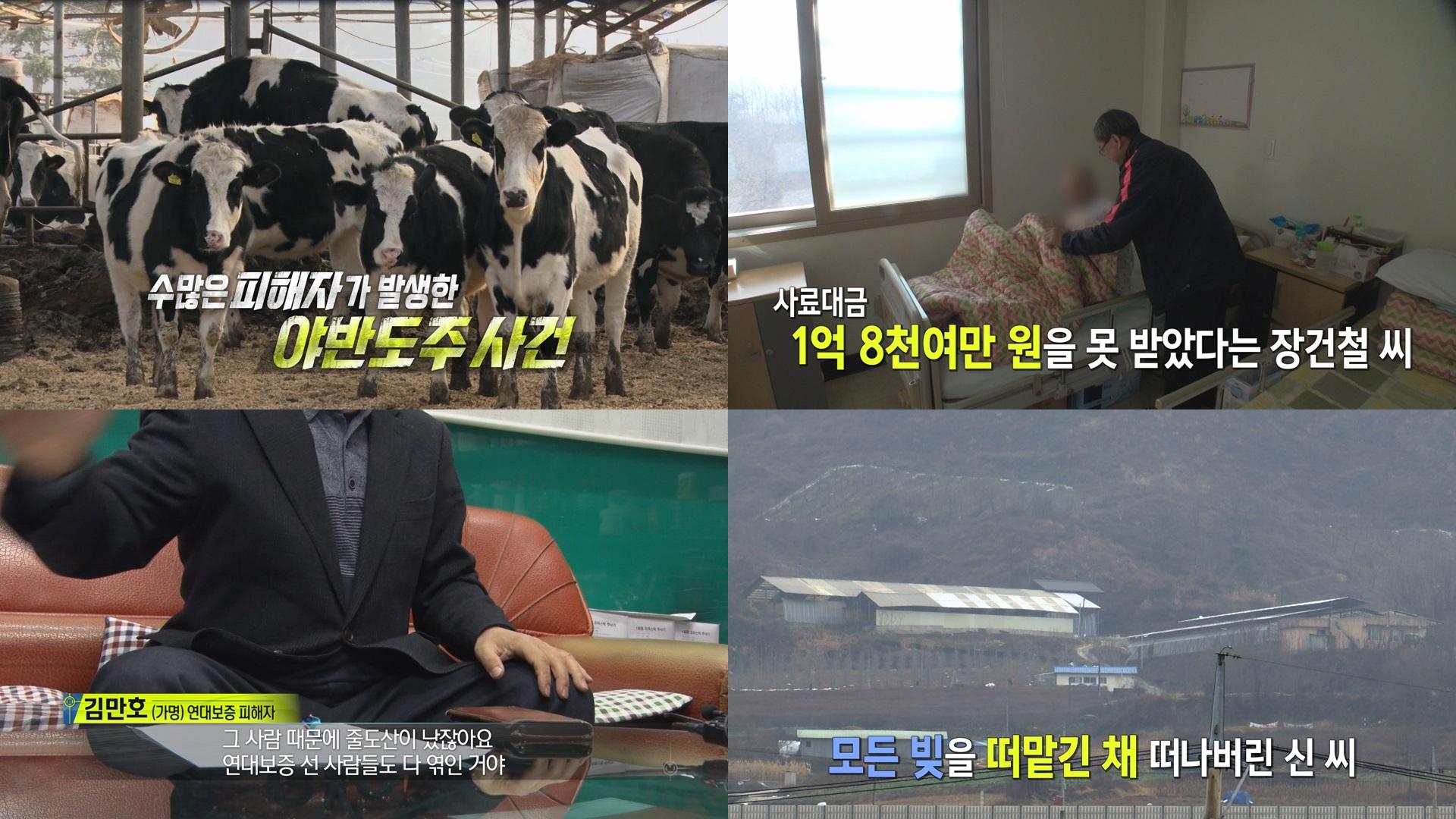 '실화탐사대' 1998년 제천에는 무슨 일이? 마이크로닷 부모 사기 사건 집중 추적
