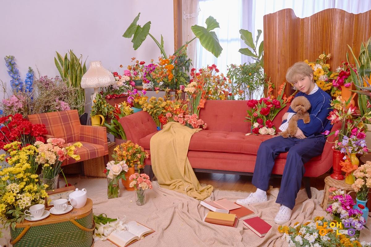 투모로우바이투게더, 'Cat & Dog' 콘셉트 포토 공개… 첫 주자는 범규