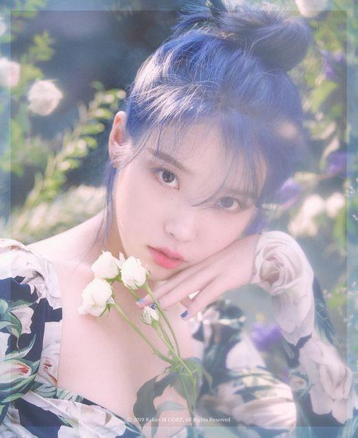 아이유 'love poem', MC몽·악동뮤지션·태연 제치고 선전ing