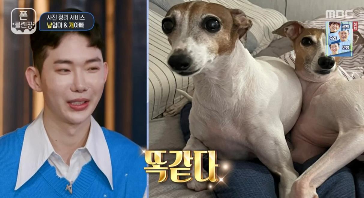 '폰클렌징' '애묘인' 김완선& '애견인' 조권의 첫 만남! | 인스티즈